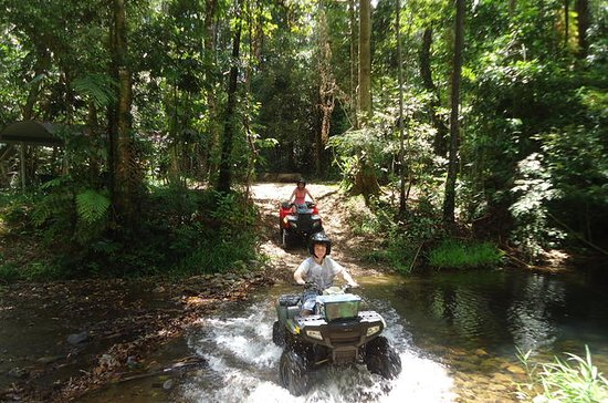 Half-Day ATV 4-Wheel Buggy Rainforest...