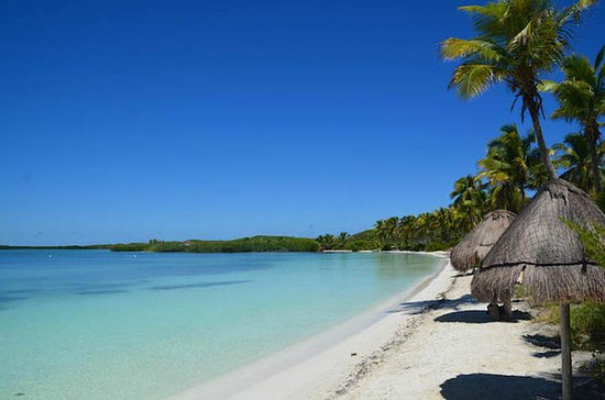 Paradise Islands Tour: Isla Contoy...