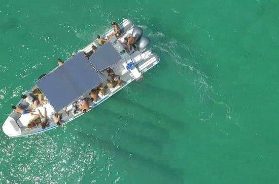 Båttur med stopp i Punta Prosciutto ...