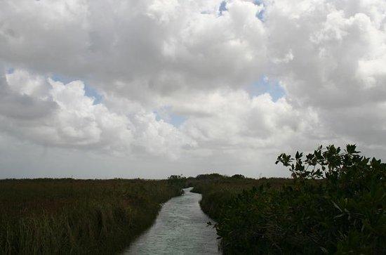 Reserva de Biosfera Sian Ka'an desde...