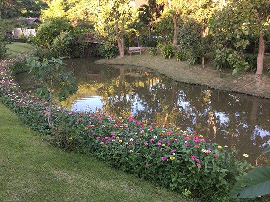 Maekok River Village Resort: photo2.jpg