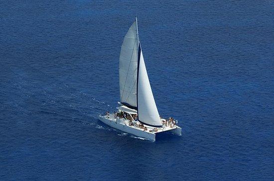 Punta Cana Half-Day Catamaran Cruise