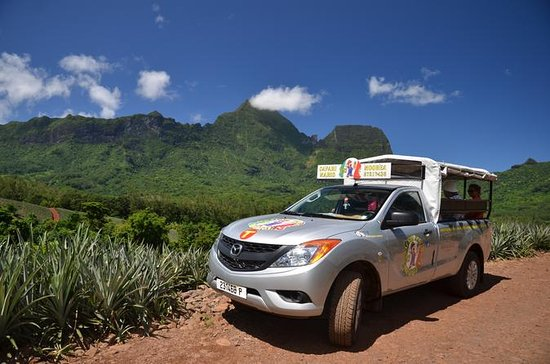 Moorea 4WD Tour with Belvedere...