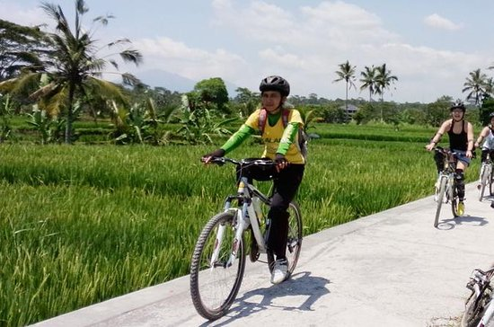 Bali Mountains and Villages Cycling...