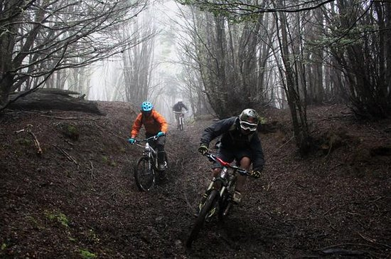 Aventura de Mountain Bike em Punta...