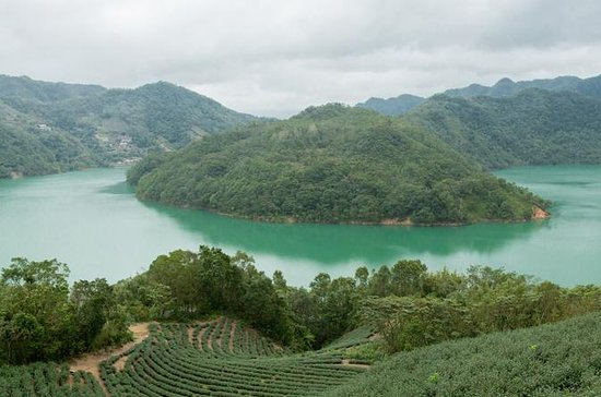 Thousand Island Lake, Pinglin Tea...
