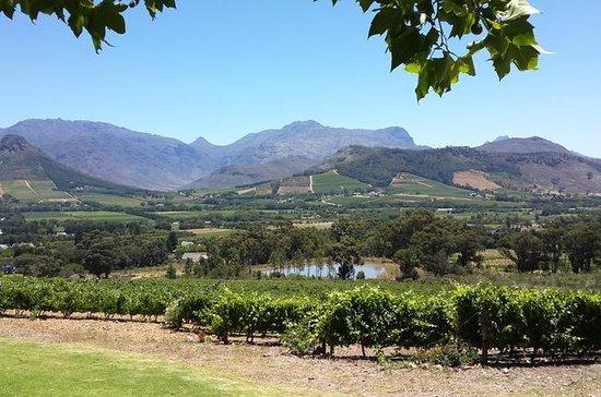 Cape of Good Hope og Cape Winelands...