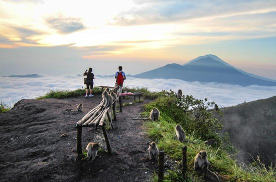 Private Tour: Bali Active Volcano...