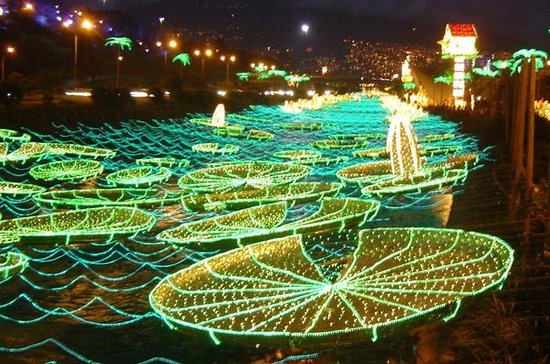 Christmas Lights Tour in Medellín