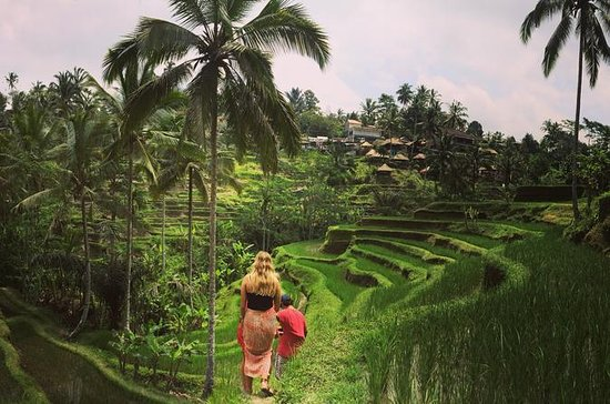 Private Tour: Balinese Culture and...