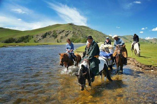 Excursión de un día a caballo por...