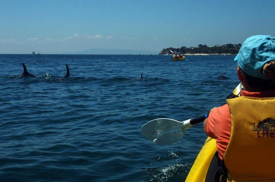 Mornington Peninsula Self-Guided Kayak Adventure for Two