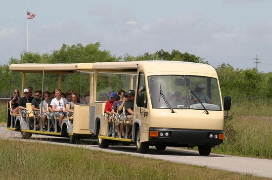 Shark Valley Everglades Guided Tram ...
