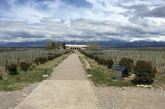 Private Lujan Wine Tour with Gourmet ...