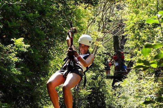 Tamarindo Canopy Zipline Tour with...