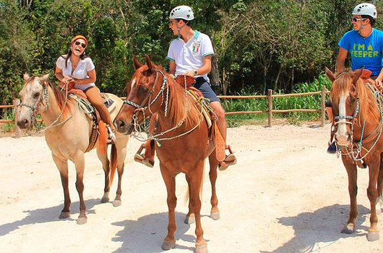 Horseback Riding and Cenote Swim from...