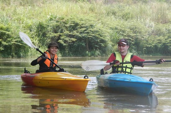 Full-Day Leisure River Kayaking into Mae Taeng Forest Reserve from...