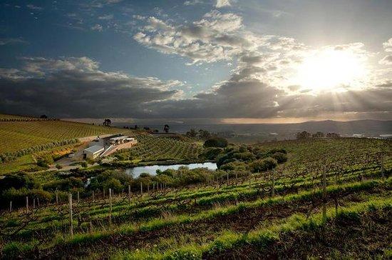 Visite privée des vins de...