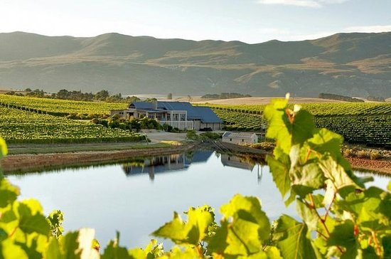 Hemel-en-Aarde Private Wine Tour from ...