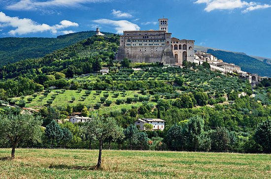 Full Day Tour to Assisi Cortona and...