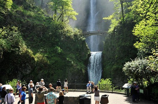 Columbia Gorge Waterfalls, Wine Small ...