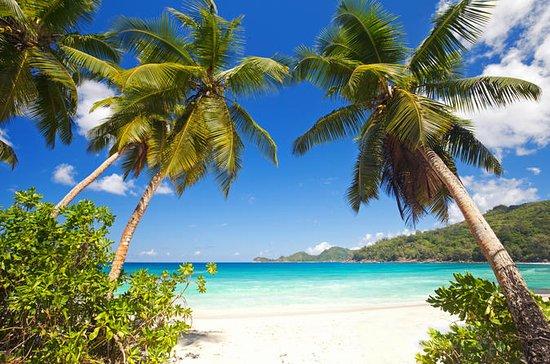 Esnórquel en Beau Vallon en Seychelles
