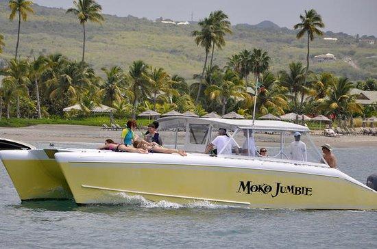 Catamaran à moteur privé et...