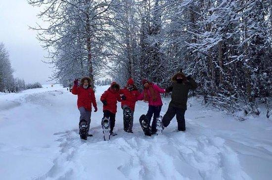 Schneeschuhtour in Chena Lakes