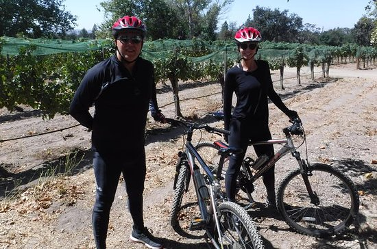 Wine Country Biking Tour in Santa...