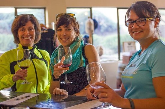 Santa Ynez Wine Country Tour from...