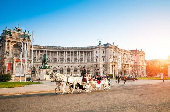 Wien dagstur från Brno eller Ostrava