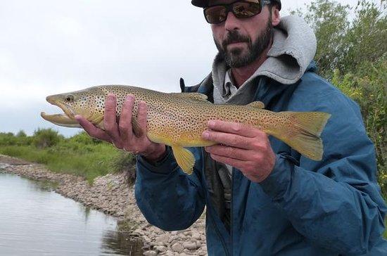 Viaje de pesca de Yellowstone Full...