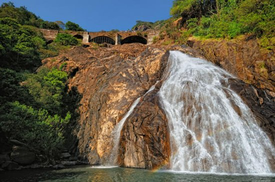 Mollem Park Tour from Goa: Dudhsagar...