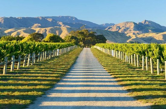 Full-Day Marlborough Wine Tour...