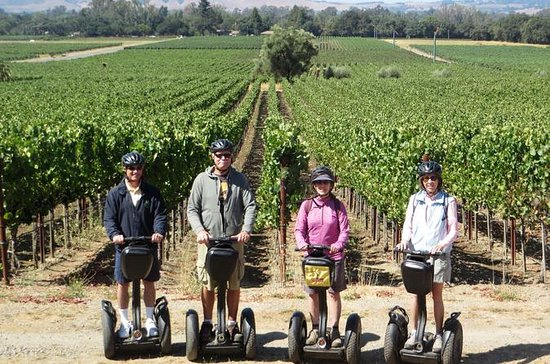 Sonoma County Wine Segway Tour