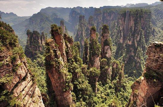 Private Day Trip: Zhangjiajie National Forest Park, Tianzi Mountain...