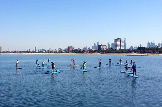 Stand-Up Paddle Board Group Leksjon...