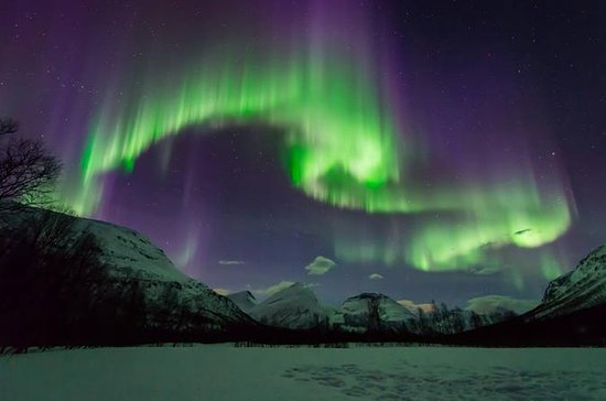 Small-Group Aurora Hunt Northern...