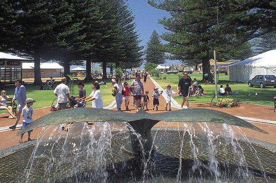 Victor Harbor and McLaren Vale Tour...