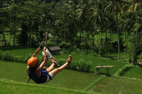 Flying Fox and White-Water Rafting ...