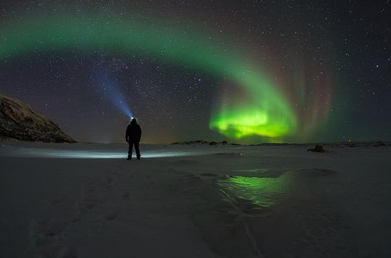 Northern Lights-Watching Tour from...
