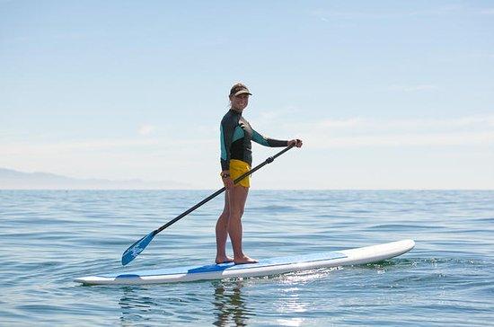 Santa Barbara Stand-Up Paddleboard...