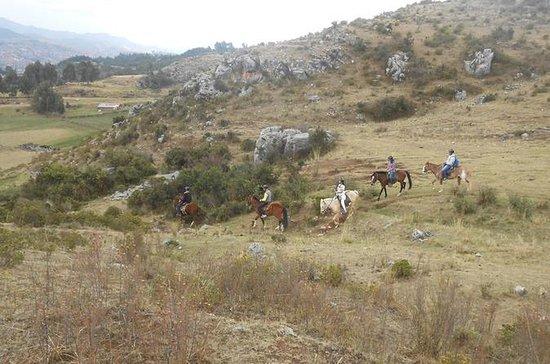 Excursión de medio día a caballo a...