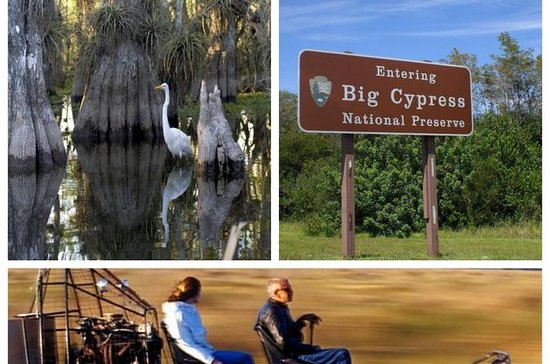Miccosukee Airboat, Big Cypress