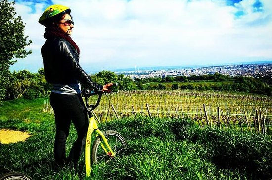 Vineyards of Vienna Downhill Scooter Tour with Panoramic Views