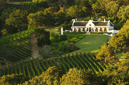 Private Half Day Wine Tour from Cape...