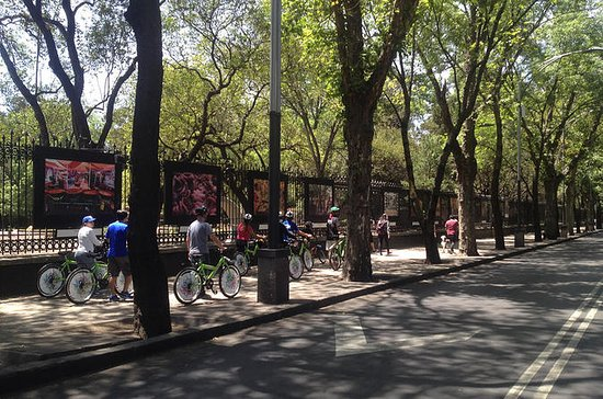 Mexico City Bike and Cultural Tour