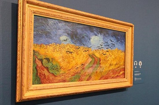 Van Gogh Museum Amsterdam Guided Tour...