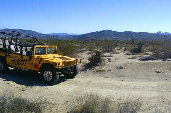 Joshua Tree Hummer Adventure from
