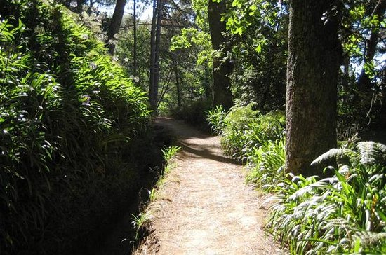 Paradise Valley - Levada Walk